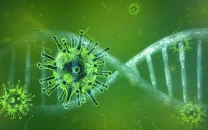 Международный Женевский автосалон отменили из-за коронавируса