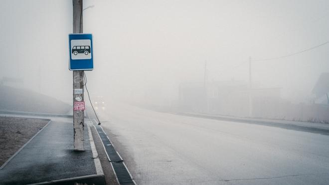 """В результате столкновения """"Hyundai"""" вылетел в автобусную остановку в Колпинском районе"""