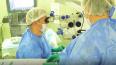 В центре Алмазова впервые имплантировано искусственное ...