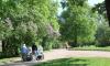 Насекомых нет: парки Выборга проверили на наличие клещей