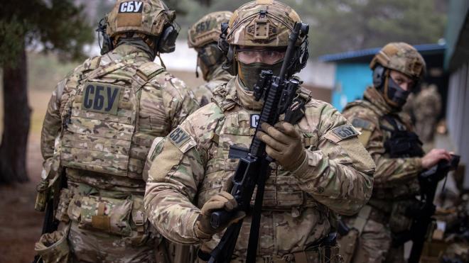 СБУ заявила о разоблачении десяти ополченцев в Донецкой области