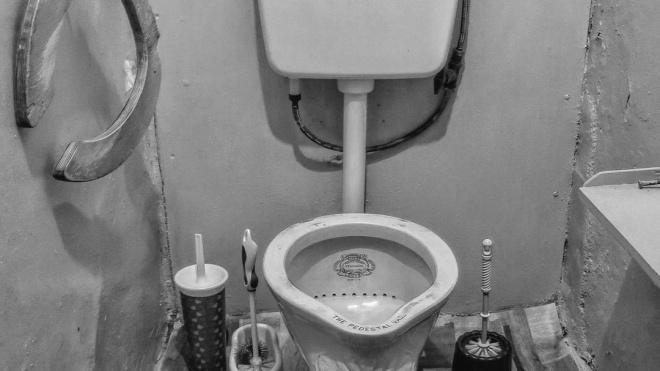 """Не унитаз, а The Pedestal Vase"": в коммуналке на Марата нашли унитаз - произведение искусства"