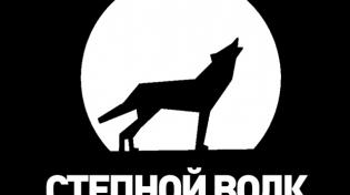 Степной Волк. Сергей Шнуров, Noize MC: как и следовало ...