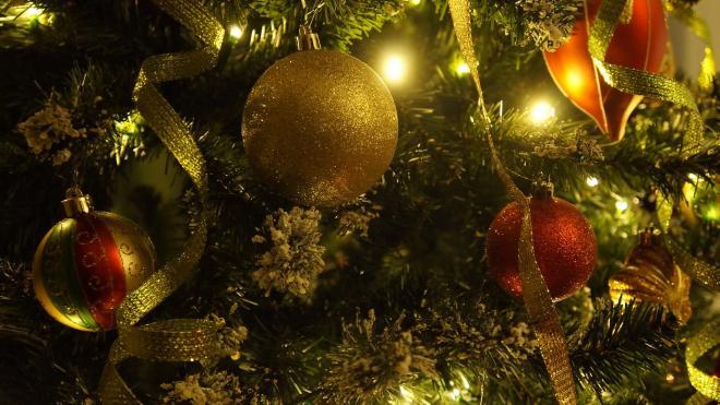 На Невском проспекте установили новогоднюю ель