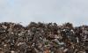 В Выборгском районе за неделю убрали 63 свалки