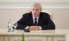 Полтавченко отметит День России в Молдавии