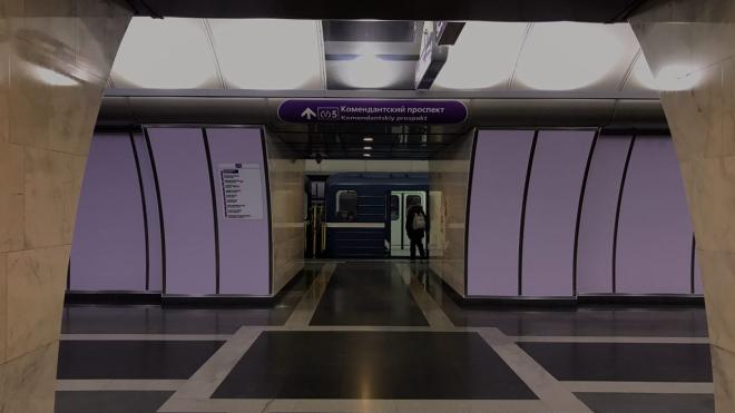 ЗакС принял в первом чтении штрафы для гадалок и попрошаек в метро