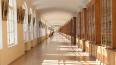 Средний балл для поступления в СПбГУ достиг рекордных ...