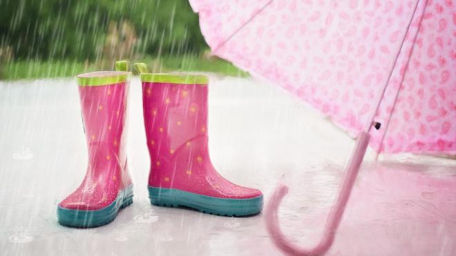 В четверг в Петербурге ожидаются дожди и пасмурная погода
