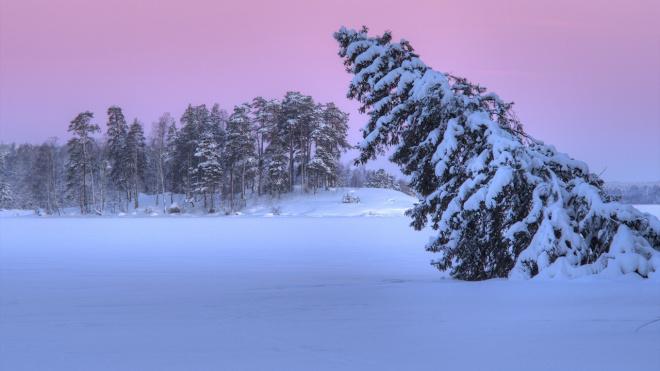 В Гатчине впервые проведут зимний фотокросс