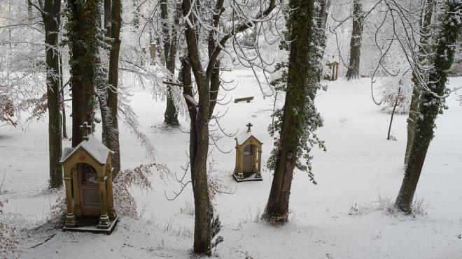 В Ленобласти с кладбища угнали грузовик