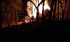 В Мурино сгорел самодельный дом бомжа