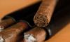 British American Tobacco закрывает фабрику в Саратове и открывает в Петербурге