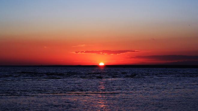 Побережье Финского залива отгородили от Васильевского острова бетонным забором