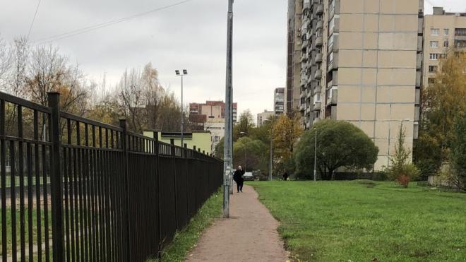 Муниципальный округ в Купчино переименуют в честь Александра Невского не раньше лета 2021-го года