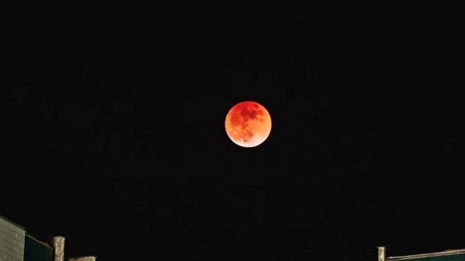 """В ночь с 24 на 25 июля петербуржцы наблюдали в небе """"кровавую Луну"""""""
