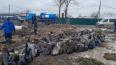 За минувшую неделюиз Петербурга вывезли 5,5 тонн ...