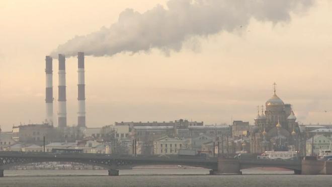 В Петербурге в системообразующих организациях постепенно восстанавливается баланс устойчивости