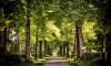Комиссия по поправкам в Генплан не спешит расширять кладбища