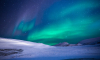 """""""Газпром нефть"""" увеличит добычу нефти в Арктике"""