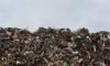 Петербургским компаниям некуда свозить 400 тысяч тонн мусора