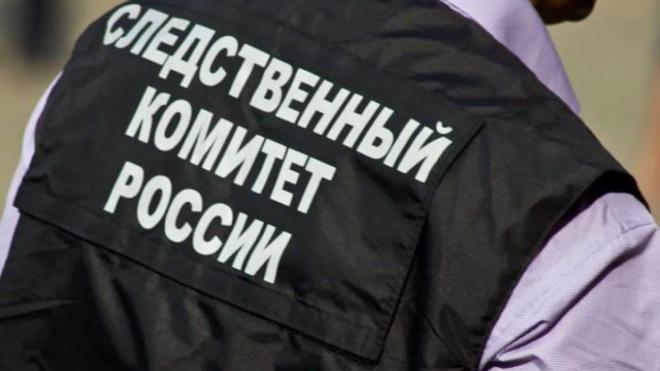 Петербургский следком заявил о снижении уровня преступности в городе