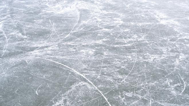 Городские власти официально запретили петербуржцам выходить на лёд