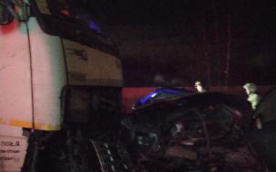 В Новом Девяткино во время ДТП погибли два человека