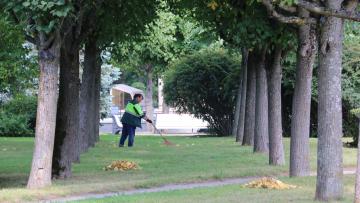 Сады и парки Петербурга открылись после непогоды
