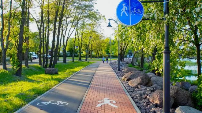 В Выборге продолжают развивать велопешеходную инфраструктуру