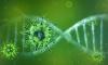 Нассим Талеб рассказал об опасных последствиях коронавируса