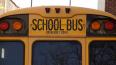 В России школьные автобусы оснастят мигалками и светоотр...