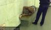 """Неравнодушные пассажиры спасли мужчину с инсультом на станции """"Гостиный двор"""""""