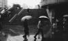 МЧС: в воскресенье в Петербурге усилится ветер и пройдут ливни с грозами