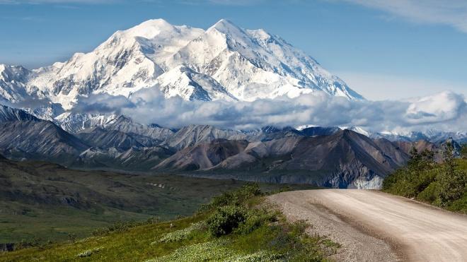 Останки самого северного сумчатого нашли на Аляске