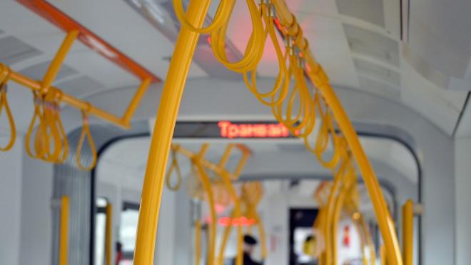 Съемки новогоднего ролика остановят троллейбусное движение по Биржевому мосту