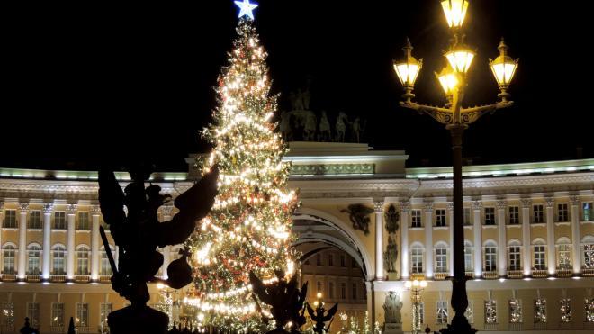 Новогодняя ель простоит на Дворцовой площади до конца января