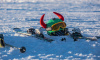Лыжников под Петербургом спасают рассказами о смерти