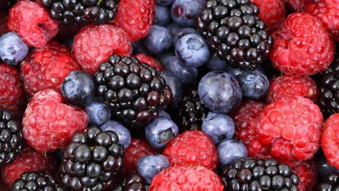 Диетолог: жизнь продлевают четыре правила питания