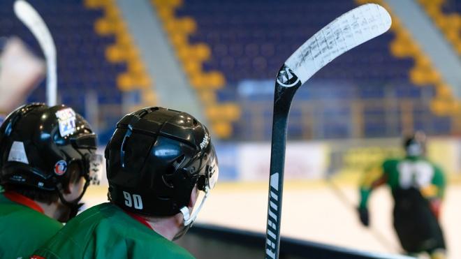 В Красносельском районе построят арену для хоккея смячом
