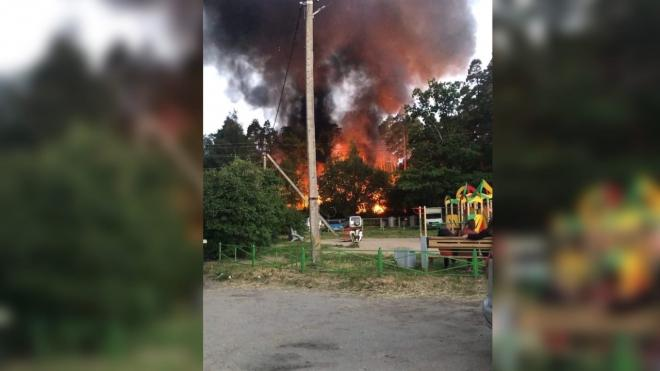 В поселке Плодовое заметили пожар