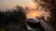 В Финском заливе ищут пропавшего рыбака