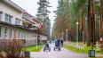 Рощинский проект благоустройства парковой зоны отмечен ...