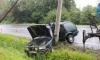 В Зеленогорске водитель врезался в фонарь