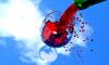 Эксперт: молдавское вино не сразу вернется на российский рынок