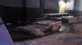 В Мурманске 4-летняя девочка выпала с 9 этажа и впала ...