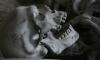 На стройплощадке в Репино нашли скелет времен ВОВ