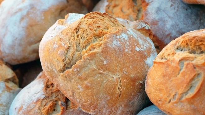 Петербуржцам дали советы по выбору качественного хлеба