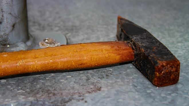 В Шушарах собутыльники до смерти забили знакомого молотком