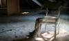 Пьяный хулиган сломал мебель в одном из магазинов Выборга